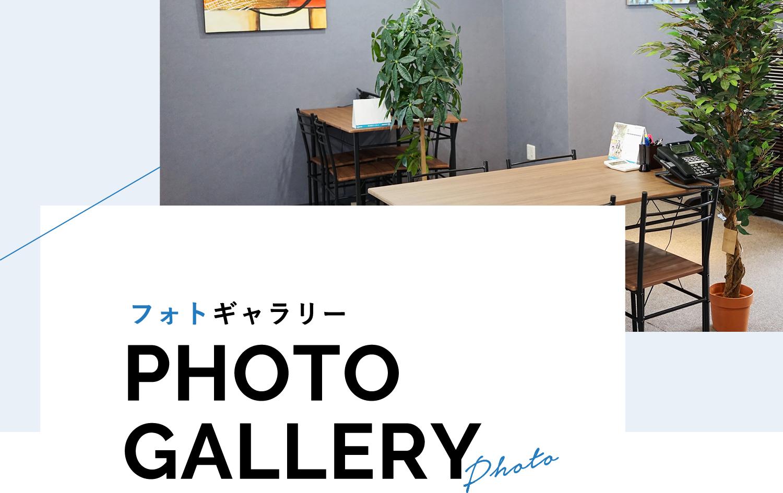 フォトギャラリー / PHOTO GALLERY